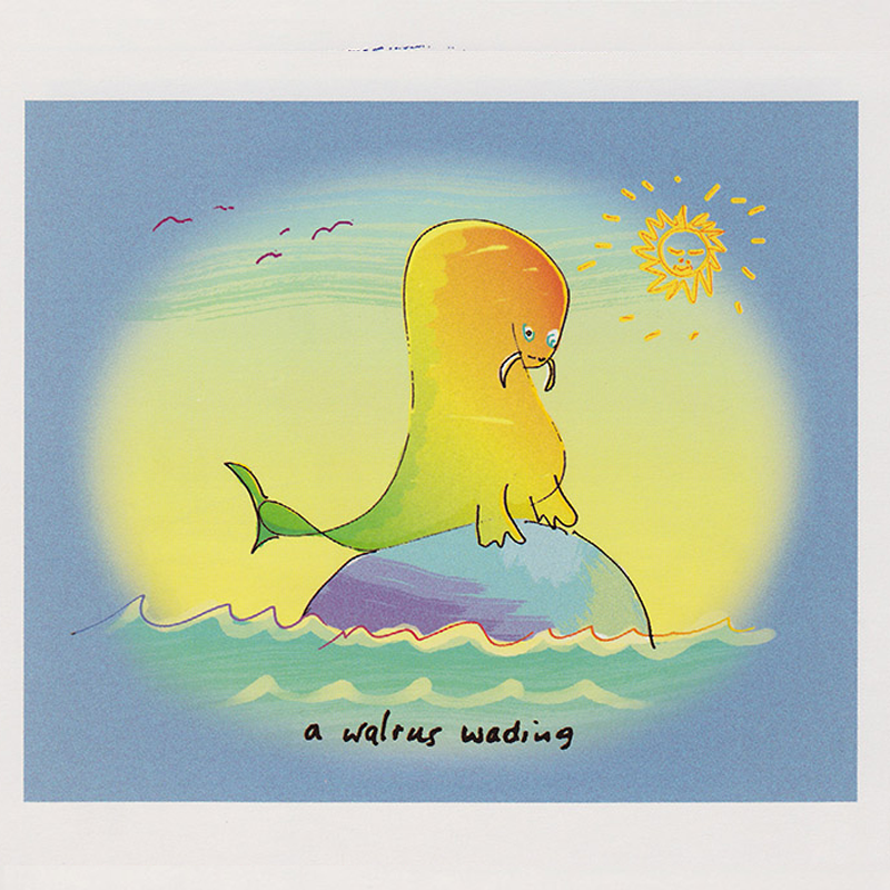 A-Walrus-Wading