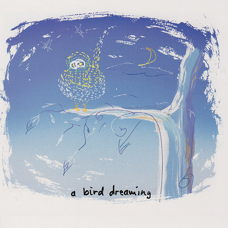 Bird-Dreaming