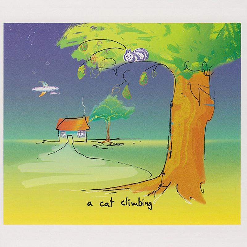 Cat-Climbing